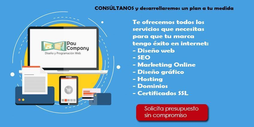 Pau Company Diseño Web en Valencia Capital